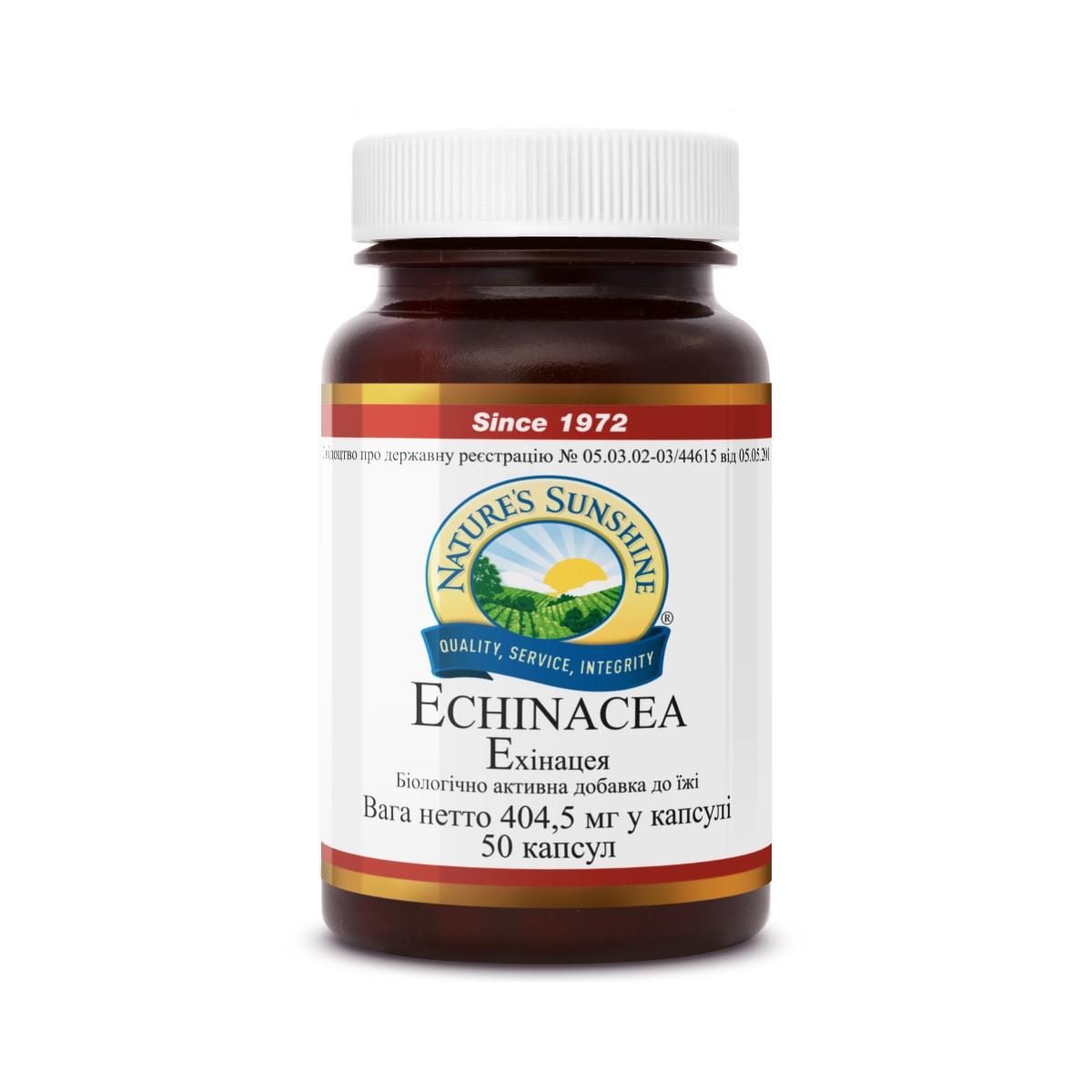 Echinacea [262] (-20%)