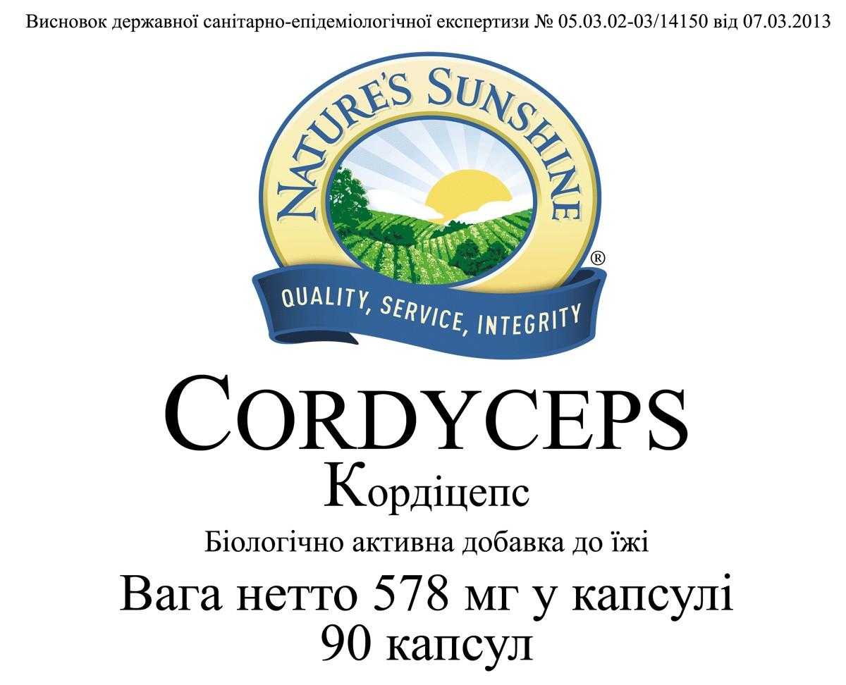 Cordyceps [1240] (-20%)