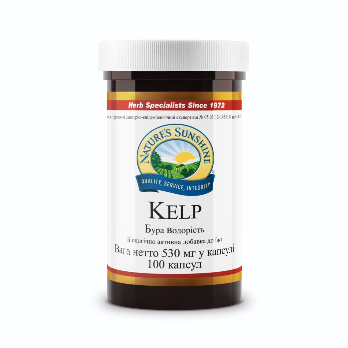 Kit Kelp [410*5] (-15%)