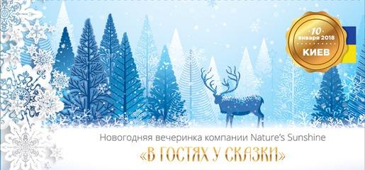 Билет на Новогоднюю вечеринку NSP