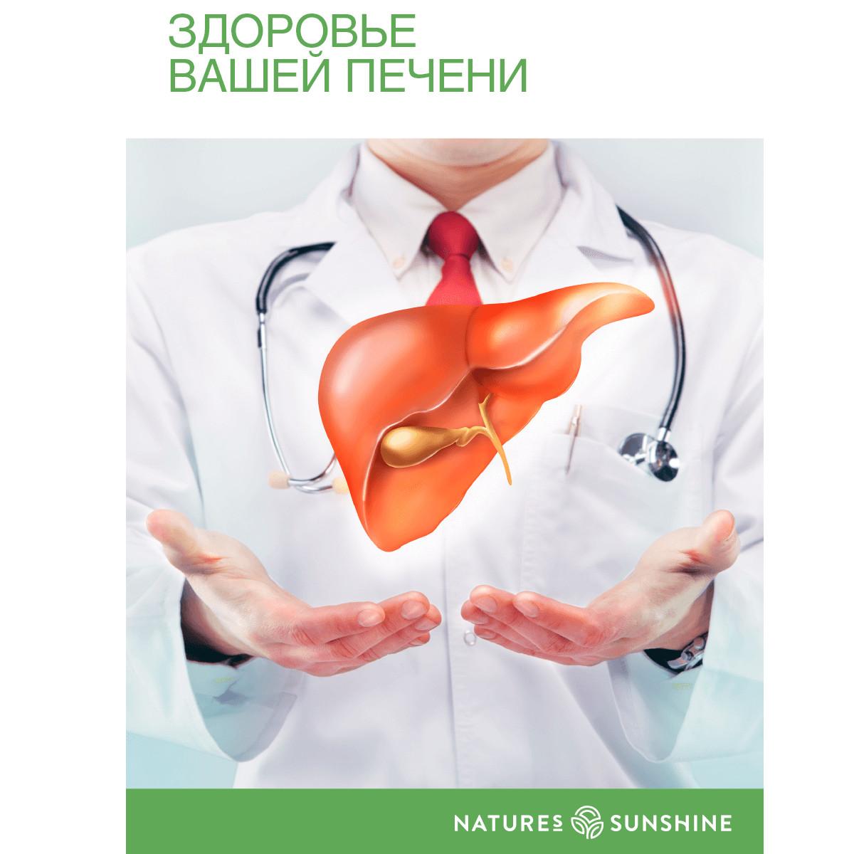 Буклет «Программа «Здоровье Вашей печени»