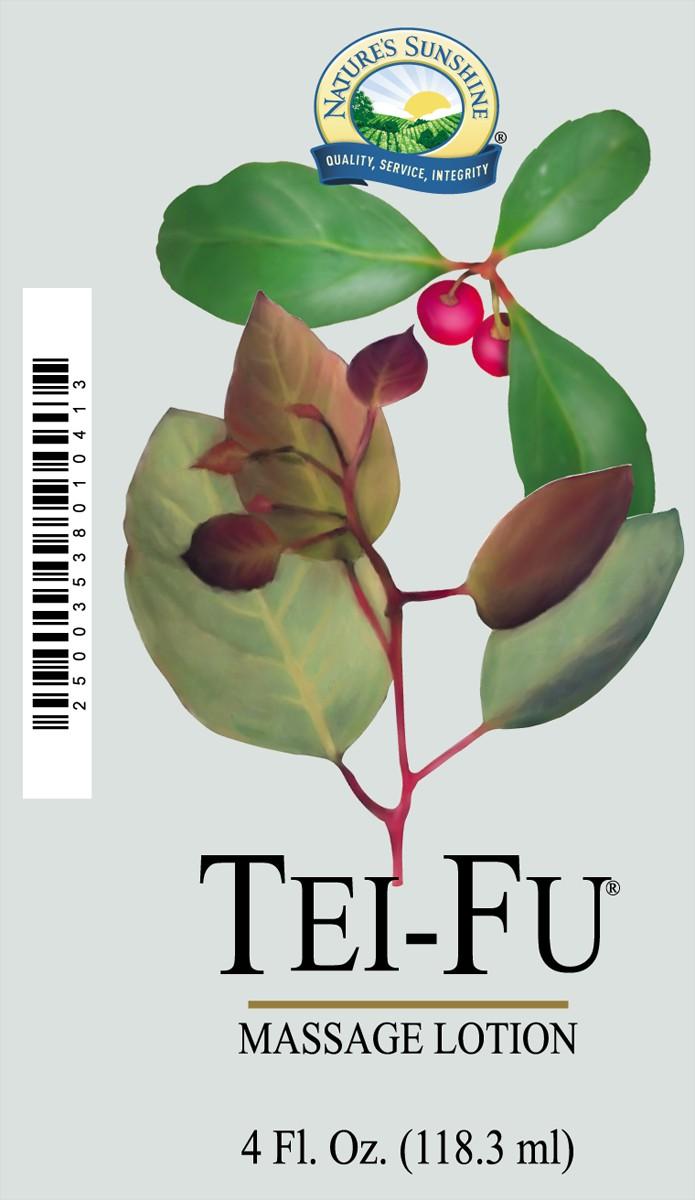 Tei-Fu Massage Lotion [3538]  (-20%)